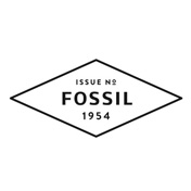 Fossil 表带